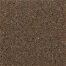 Daltile Geo Flecks Pheasant Run NQ1646CHIPTHU