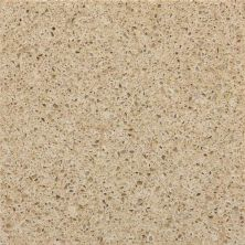 Daltile Geo Flecks Pacific Sand Beige/Taupe NQ2246CHIPTHN