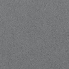Daltile Micro Flecks Brushed Flannel Gray/Black NQ6046CHIPTHT