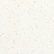 Daltile Micro Flecks Simply White NQ76SLAB3/41L