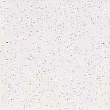 Daltile Semigloss Pepper White (1) White/Cream 0147661P
