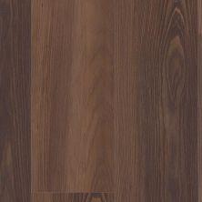 Trucor 9 Series Fire Oak 1034-D3107