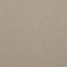 Dixie Home Spellbinding Sand Dollar 531407509