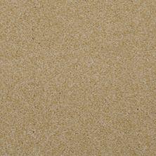 Dixie Home Spellbinding Sand Dune 531417504