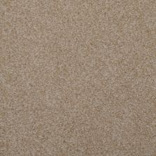 Dixie Home Spellbinding New Taupe 531427510