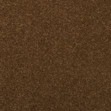 Dixie Home Spellbinding Spice Trader 531437500