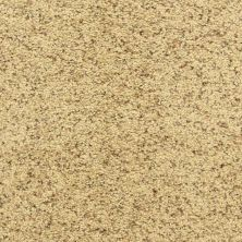 Dixie Home Star Power Pebble Mosaic D02030171