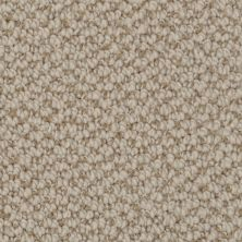 Dixie Home Authentic Living Stipple G522927235