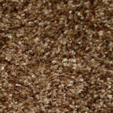 Dixie Home Brilliance Tawny G523637521