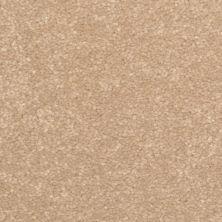 Dixie Home Inspiring Sandstone G523927333