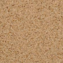 Dixie Home Semitones Tempura G525635309