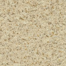 Dixie Home Magic Moment Sand Motif G526520179
