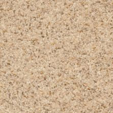 Dixie Home Treasured Moment Sand Motif G526620179