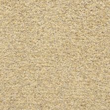 Dixie Home Colorworks Sand Storm G528720220