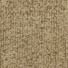 Dixie Home Aspects Sandbark G528932060