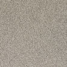 Dixie Home Textra Stucco G530483800