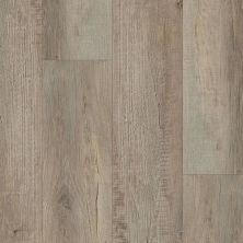 Trucor Prime Seasoned Oak P1013-P1013