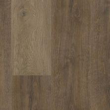 Trucor 7 Series Autumn Oak P1037-D3313