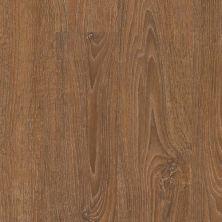 Trucor 5 Series Copper Oak P1038-D9130