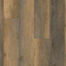 Trucor 5 Series Amber Pine P1039-D4001