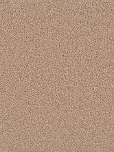 Dream Weaver Broadcast Plus Sandstone 3125_715