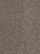 Dream Weaver Smokey Taupe 3640_381