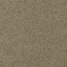 Dream Weaver Acclaim Sienna Sand 1324_680