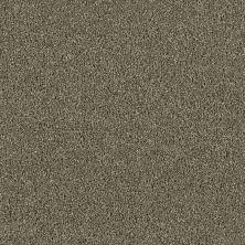 Dream Weaver Acclaim Cinnamon Tea 1324-528