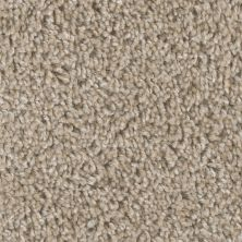 Dream Weaver West Brow Natural Pebble 6035_609