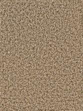 Dreamweaver Cameo Shores Bronzite GF3325_717