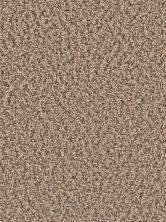 Dream Weaver Gemstone Plus Fossil 5225_532