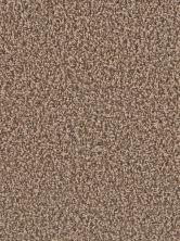 Dream Weaver Gemstone Plus Bronzite 5225_717