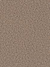 Dream Weaver Gemstone Plus Wheatland 5225_743