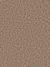 Dream Weaver Gemstone Plus Fawn 5225_759