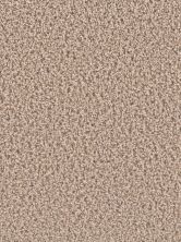 Dream Weaver Gemstone Plus Almond 5225_782