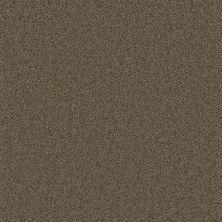 Dream Weaver Pikes Peak Balsam 2625_565