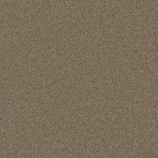 Dream Weaver Pikes Peak Sandstone 2625_715