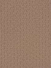 Dream Weaver Concord Peanut Shell 9325_168