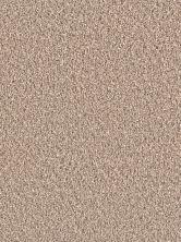 Dream Weaver Stunning Tumbleweed 4765_883