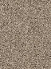 Dream Weaver Gothem Acorn 9600_858