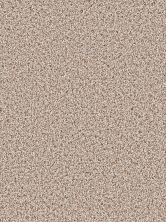 Dream Weaver Gothem Stucco 9600_905