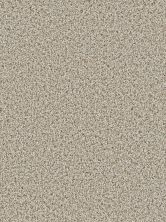 Dream Weaver Cosmopolitan II Stucco 8550_905