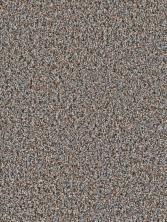 Dream Weaver Mardi Gras Greystone 4090_880