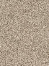 Dream Weaver Cosmopolitan II Linen 8550_824