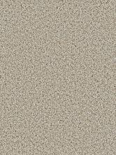 Dream Weaver Cosmopolitan Stucco 5755_905