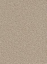 Dream Weaver Cosmopolitan Linen 5755_824