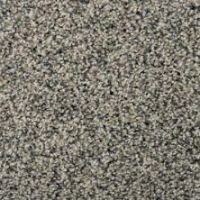 Karastan Magnetic Beauty Flannel 43693-9505