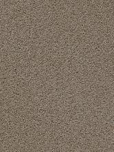 Dream Weaver Soft Touch Cashew 9420_530