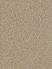 Dream Weaver Soft Touch Sawgrass 9420_701