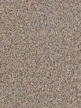 Dream Weaver Mardi Gras Desert Fawn 4090_862